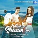 Aawara Shaam Hai - Manjul Khattar mp3 songs