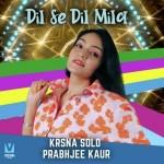 Dil Se Dil Mila - Krsna Solo mp3 songs