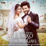 Humko Tum Mil Gaye - Vishal Mishra mp3 songs