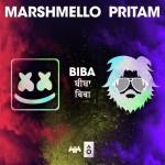 Biba  - Shirley Setia And Pritam