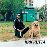 Krk Kutta - Mika Singh mp3 songs