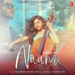 Naam - Tulsi Kumar mp3 songs