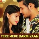 Tere Mere Darmiyaan - Yasser Desai mp3 songs