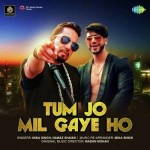 Tum Jo Mil Gaye Ho - Mika Singh mp3 songs
