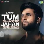Tum Na Jane Kis Jahan Men Kho Gaye - Sanam mp3 songs