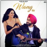 Wang Da Naap  - Ammy Virk mp3 songs mp3