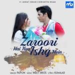 Zaroori Hai Kya Ishq Mein - Papon And Meet Bros mp3