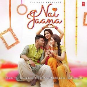 Nai Jaana - Tulsi Kumar mp3 songs