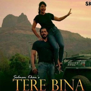 Tere Bina - Salman Khan mp3 songs