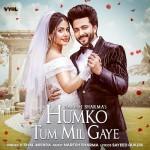 Humko Tum Mil Gaye - Vishal Mishra